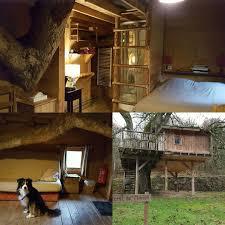 chambre d hote insolite belgique notre cabane à l hôtel restaurant du moulin de lisogne cabane