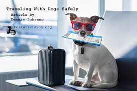 traveling with pets images Buster 39 s vision traveling with pets stress can cause pet jpg