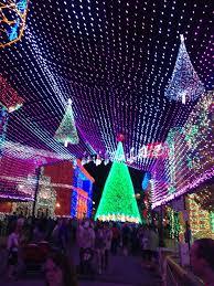twinkle lights tags lights etc decorating