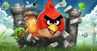 artist discovers u0027real u0027 angry birds kerala india daily