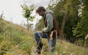 planting native daffodils u2013 dig delve u2013 an online magazine about