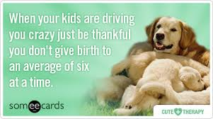 ecards for kids puppies kids parent therapy ecards someecards