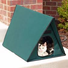 Keep Cats In Backyard Best 25 Outdoor Cat Shelter Ideas On Pinterest Kitty House