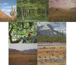 ecology ch 22 u0026 23 presentation u0026 answers