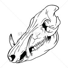 free pig skull vector image 1426000 stockunlimited