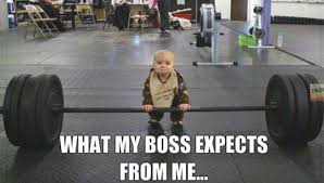 Boss Meme - what my boss expects from me