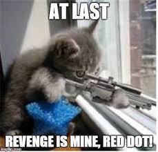 Revenge Memes - sniper cat imgflip