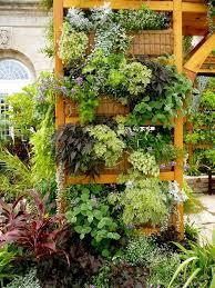1003 best jardines verticales images on pinterest gutter garden