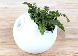 self watering planters self watering vegetable garden containers
