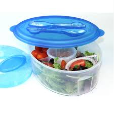 Utensil Storage Container Frigidaire Salad To Go Bowl Food Storage Cold Pack Utensil