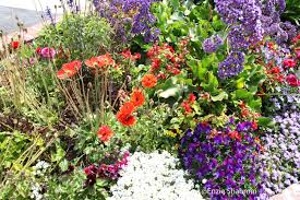 Landscape Flower Bed Ideas by Small Flower Garden Design Ideas The Garden Inspirations