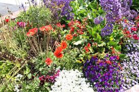 100 small flower garden ideas backyard home garden of rock
