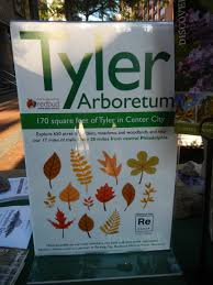 redbud native plant nursery park ing day philadelphia 2015 u2013 tyler u0027s first u201cparklet u201d in the