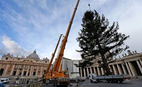 anorak the biggest christmas trees of 2012 u2013 from new york and