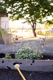 how to grow fall u0026 winter vegetables u2014 boxwood avenue