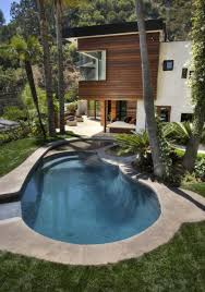 stunning modern cabin with small pool idea feat palm trees and