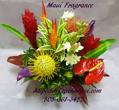 tropical arrangements a special touch florists serving lahaina