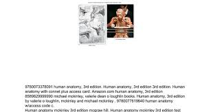 Hole Anatomy And Physiology 13th Edition Human Anatomy Mckinley 3rd Edition Google Docs
