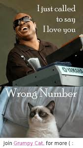 Grumpy Cat Meme Love - i just called to say i love you wrong number join grumpy cat for