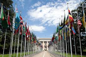 Flags Of All Nations Proposed Business U0026 Human Rights Treaty Should Include States
