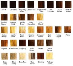 light strawberry blonde hair color chart light strawberry blonde hair color chart find your perfect hair style