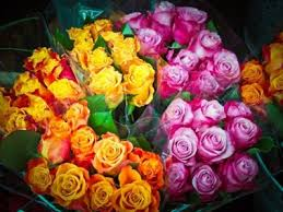 color roses 11 color meanings to help you the bouquet