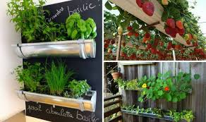 10 rain gutter garden ideas to spruce up your garden
