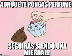Meme Caca - meme caca aunque te pongas perfume on memegen