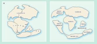 continental drift anthropology iresearchnet