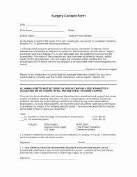 hybrid resume template hybrid resume professional resume templates