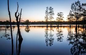 Louisiana travel umbrella images Must experience activities near many and toledo bend louisiana jpg