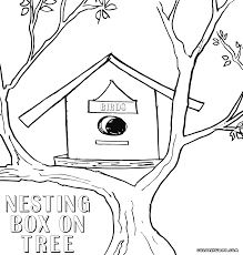 nest box coloring pages coloring pages to download and print
