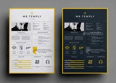 free resume template word processor free ultra minimal one page résumé template presents information