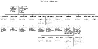traditional family tree package