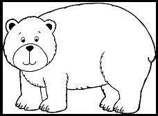 46 brown bear images book