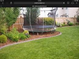squirrels jumping on trampoline backyard image with excellent
