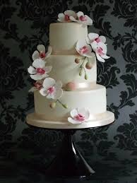 best 25 simple elegant cakes ideas on pinterest simple elegance