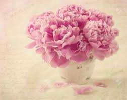 Peony Flowers Peony Flowers In A Vase Stock Photo Picture And Royalty Free