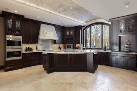 Kitchen Designs Dark Cabinets by Kitchen Surprising Dark Wood Kitchen Cabinets Designs Brown Wood