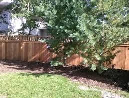 good fences make good neighbors straight line fence
