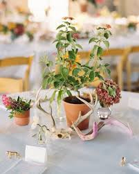 Potted Plants Wedding Centerpieces by 109 Best Wedding Design Images On Pinterest Wildflower