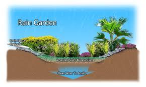 plants native to indiana rain gardens sustainable indiana