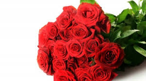 Red Rose Bouquet Wallpaper Red Roses Bouquet Hd 5k Flowers 4169