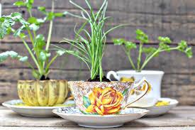 flower pot favors when tea cups become flower pots transformations