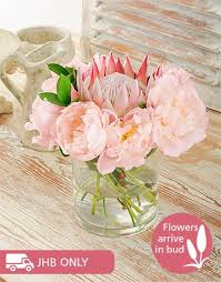 where to buy peonies buy peonies and king protea vase online netflorist