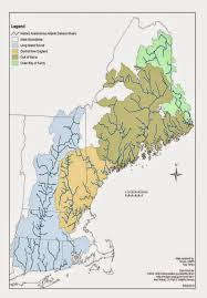 New England State Map by Atlantic Salmon Flies Native New England Salmon Flies Part I