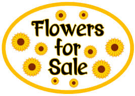 Flowers For Sale Garden Centre Role Play Plants Flowers Teaching Resources Eyfs Key