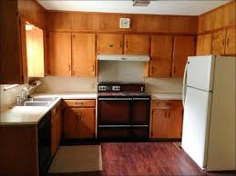 Neutral Colors For Kitchen Walls - kitchen kitchen paint colors with light cabinets wood cabinet