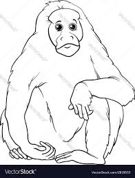 uakari animal cartoon coloring page royalty free vector