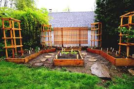 raised garden beds vegetable decor tips planter for design ideas